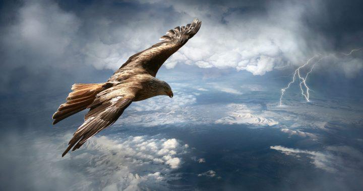 Etana and the eagle
